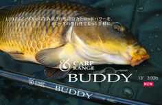 "POLE&LINE CARP RANGE 13ft 4sections carp rod ""BUDDY"""