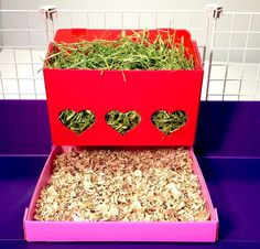 Hearty Hay Buffet and Corral for Guinea Pig Cages coroplast Diy Guinea Pig Cage, Guinea Pig Food, Guinea Pig Hutch, Guinea Pig House, Pet Guinea Pigs, Guinea Pig Care, Pet Pigs, Chinchillas, Pet Rodents