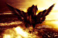 Pegasus gov't spyware used to target colleague of slain drug cartel journalist Meditation Music, Guided Meditation, Pegasus, New Moon Astrology, Moon Glyphs, Poseidon, Free Music Streaming, Astrology, Greek Mythology