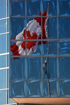 A large Canadian flag flies in the breeze and can been seen reflected in the windows of a building at Sackville Landing in Halifax Harbour, Nova Scotia. The Canadian flag is a symbol of Canadian pride and patriotism. Canadian Flags, I Am Canadian, Collective Identity, Glass Office, True North, Canada Day, Cool Countries