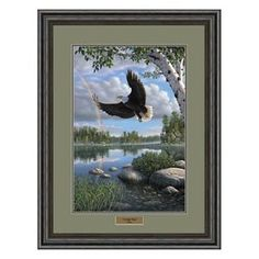 An eagle soars low to the ground of this beautiful bay overlooking a glorious rainbow in Kim Norlien& On Eagle& Wings. The Eagles, Bald Eagles, Beautiful Birds, Animals Beautiful, Nicolas Vanier, Eagle Pictures, Eagle Art, Eagle Wings, Colorful Birds