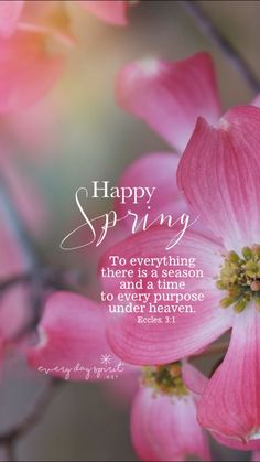 Spring time, four seasons, springtime quotes, spring quotes, spring aesthet Spring Quotes Flowers, Springtime Quotes, Flower Quotes, First Day Of Spring, Happy Spring, Hello Spring, Spring Time, Easter Arts And Crafts, Spring Aesthetic
