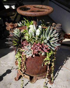 Succulent wine press by Megan Boone