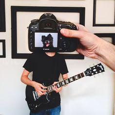 Creative Pet Portraits-11 – Fubiz™