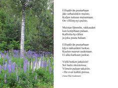 Runot - Marlan kuvat Plants, Plant, Planets