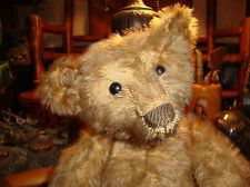 Early 1915 steiff Bear fluïdum mohair and long arms and show button eyes