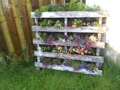 My pallet the first year Pinterest Garden, Outdoor Furniture, Outdoor Decor, Spring Time, Ladder Decor, Outdoor Living, Backyard, Birds, Outdoor Structures