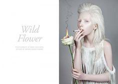 wild-flower-fgr-01
