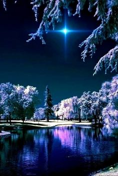 Crunchy winter night – Miracles from Nature Winter Photography, Landscape Photography, Nature Photography, Mobile Photography, Night Photography, Travel Photography, Winter Pictures, Nature Pictures, Beautiful Winter Scenes