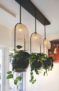 83 Best Grow Lighting Indoor Gardens Images Lights