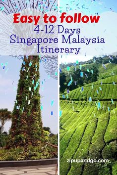 Planning to visit both Singapore and Malaysia in one go? We prepared a comprehensive Singapore Malaysia Itinerary packed with great places for you. Read more on our easy to follow Singapore Malaysia Itinerary! #singaporetravel #malaysiatravel #destinations #singaporemalaysiaitinerary #travelitinerary #asiatravel #travelguide #exploreasia #easytofollowguide Visit Singapore, Singapore Malaysia, Singapore Travel, Malaysia Itinerary, Malaysia Travel Guide, Singapore Attractions, Plan Your Trip, Travel Advice, Asia Travel