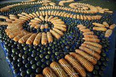 Heraldos del Evangelio Paraguay: El Papa Francisco en Paraguay: el mayor altar hecho de semillas.