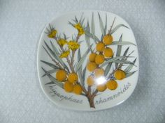 Vintage Wall plaque with Sea Buckthorn by Arabia Finland Esteri Tomula design