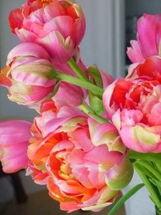 Peony tulips.....perfect way to brighten your home in the winter. Happy colors!