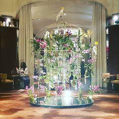 Modesta e discreta #paris #hotel #thuglife #lol