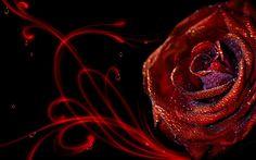Wallpaper HD 3d Flower Rose – 3D, Flowers Wallpaper Collections ...