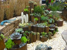 Pipe  Succulent Planters -- Dang! I love this!