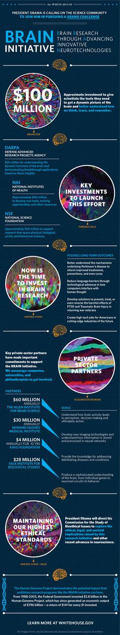 White House Releases Infographic on the BRAIN Initiative.