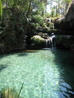 Natural swimming pool, I wouldn't see any reason to wear a bathing suit in this beautiful natural pool