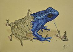 Blueberry Frog. Surreal Illustrations of Animals in Mid-Construction. By Ricardo Solis.