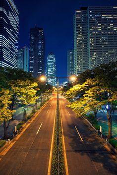 Shinjuku, Tokyo, Japan..I miss this place