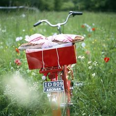 love the red bike with basket in the field with red flowers