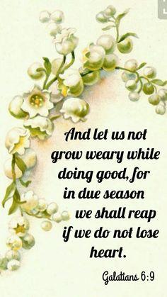 Galatians 6 : 9