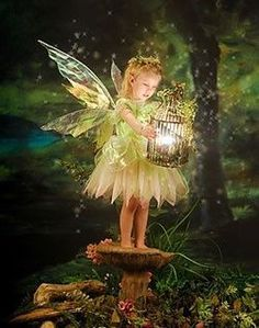 The Enchanted Fairy