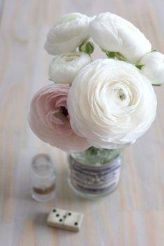 Bouquets, Renoncules