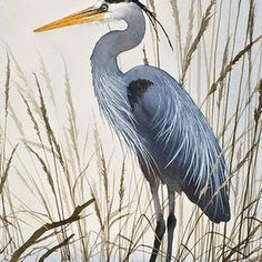The delicate natural beauty of a secluded, quiet resting place for a blue heron along a bright driftwood shore. An original watercolor painting by Fine Art America artist James Williamson recreated as a fine art print by Fine Art America. Flying Bird Silhouette, Arches Watercolor Paper, Thing 1, Blue Heron, Photos For Sale, Nature Paintings, Beach Art, Beautiful Paintings, Natural World