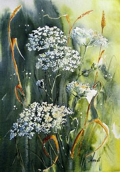 Queen Ann's Lace Painting by April McCarthy-Braca Lace Painting, Watercolour Painting, Painting & Drawing, Easy Watercolor, Watercolours, Watercolor Cards, Watercolor Flowers, White Flowers, Beautiful Flowers
