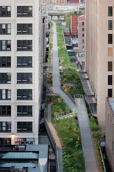 the high line by james corner field operations and diller scofidio + renfro in new york city