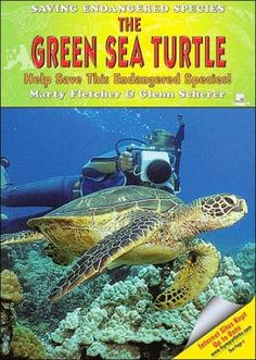 endangered sea turtle - Google Search