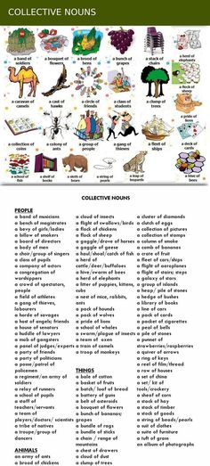 In linguistics, a collective noun is a word that refers to a collection of things taken as a whole...