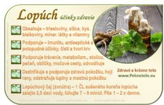 Lopúch - použite ho v prospech svojho zdravia Raw Food Recipes, Healthy Recipes, Nordic Interior, Organic Beauty, Food Art, Natural Health, Life Is Good, Detox, Health Fitness