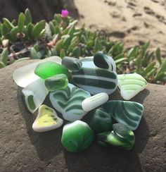 I only got two days at this magical California beach, but the night in between I sorted some finds and brought a few back down for a beach photo. These are some greens. I love the succulents that grow on the beach with the pink flowers!