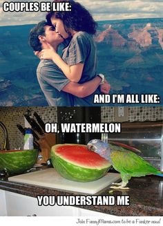 Couples be like...
