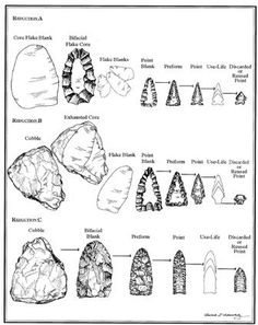 Biface reduction and stages of stone tool manufacturing. University of Minnesota, Dept. of Anthropology. Native American Tools, Native American Artifacts, Native American Indians, American History, Indian Artifacts, Ancient Artifacts, Stone Age Tools, Art Rupestre, Vikings
