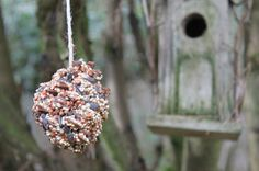Green Owl Art: Easy Bird Feeder Crafts