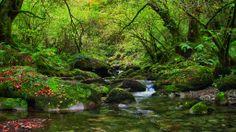 Río del Infierno