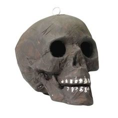 Skull Corpse with Light Up Eyes Halloween Prop