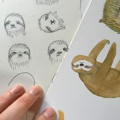 Character studies for a new slothy project! #sloth #illustration #illustratorinminneapolis #characterstudy #watercolor #pencil