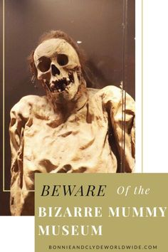 Beware of the most bizzare mummies you will ever see in the world! This unique exhibit is one of the most famous attractions in Mexico. Mummy Museum, Bonnie N Clyde, Exhibit, Halloween Face Makeup, Art, Art Background, Kunst, Art Education