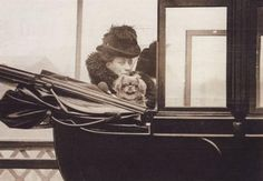 Queen Alexandra and pekingese in a royal carriage