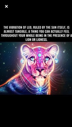Leo Sun Scorpio Moon, Moon Zodiac, Leo Virgo Cusp, Astrology Leo, Astrology Houses, Astrology Chart, Leo Lover, Leo Symbol, All About Leo