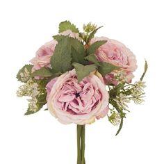 pinkish lavender garden rose