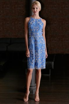 One of my favorite looks from Naeem Khan Resort 2015 Collection (Worn by Angie Harmon)