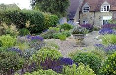 Scented Herb Garden, Oxfordshire - lovely planting and colours against the house