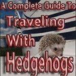traveling-with-hedgehogs-pinterest