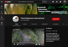 Think Elephants International is a non-profit dedicated to the conservation of Asian elephants through research and education. Learn more about our. Animal Behaviour, Behavior, Keystone Species, Community Channel, Asian Elephant, Educational Videos, Science Education, New Series, Elephants